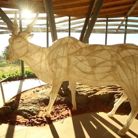 Khwattu Heritage Centre Museum
